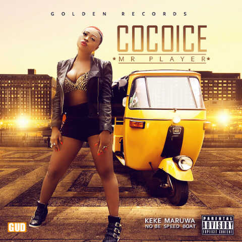 COCOICE MR PLYER