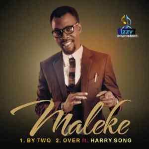 maleke logo